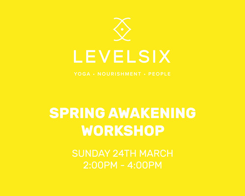 LevelSix: Spring Awakening Workshop